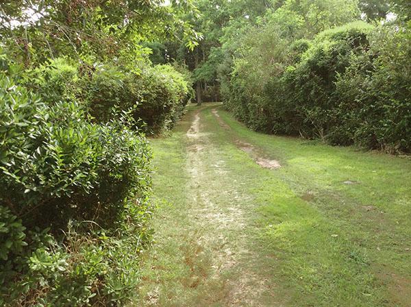 Driveway facing Hinckley